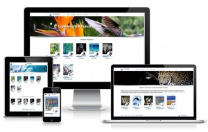Portfolio_Rehasense_WebdesignMeppel