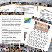 Actieplan verbeteren binnenstad Gemeente Meppel 2017