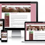 Responsive WordPress Website KI Mobiel Meppel