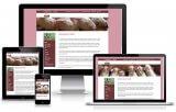 Responsive WordPress Website KI Mobiel Meppel