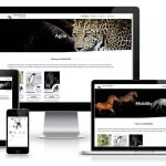Corporate Business Responsive Portfolio Website Rehasense UK