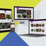 Webshop Ontwikkeling Bloembinderij Rembrandt Bloemen Meppel